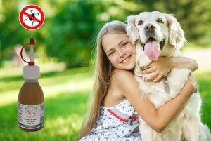 Zecken Schutzöl für Hunde